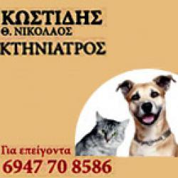 ΚΩΣΤΙΔΗΣ ΝΙΚΟΛΑΟΣ