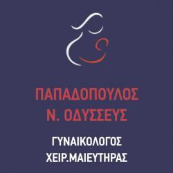 ΠΑΠΑΔΟΠΟΥΛΟΣ Ν. ΟΔΥΣΣΕΥΣ MSc
